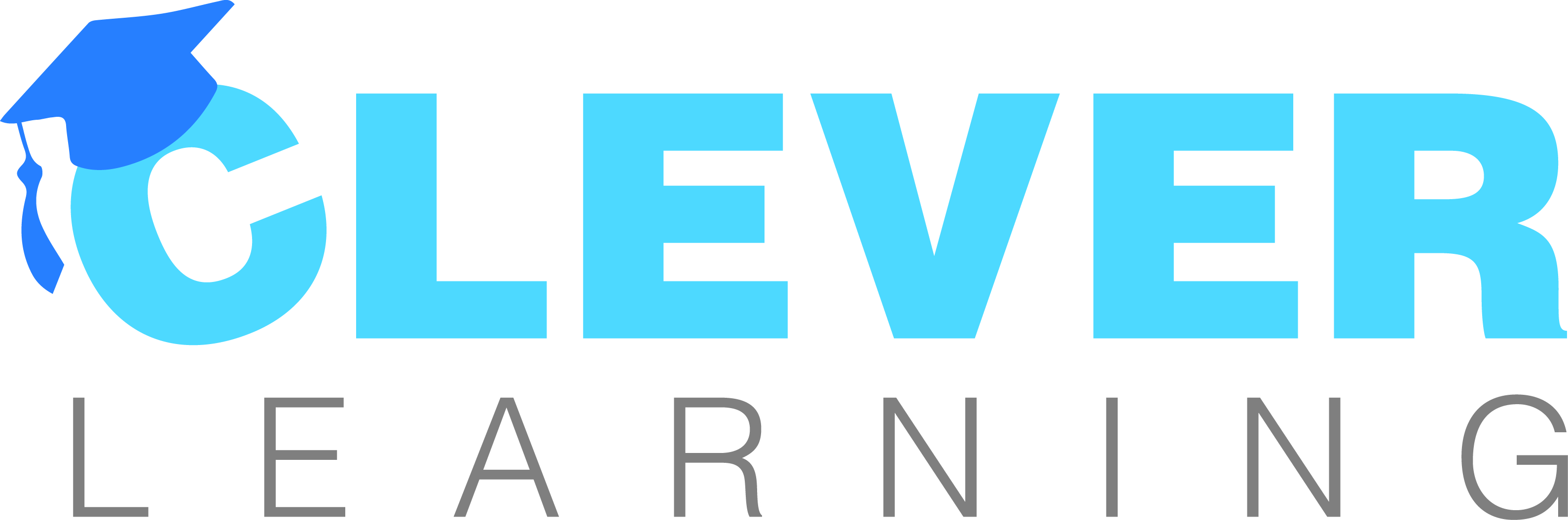 CLEVER_LEARNING_logo.jpg